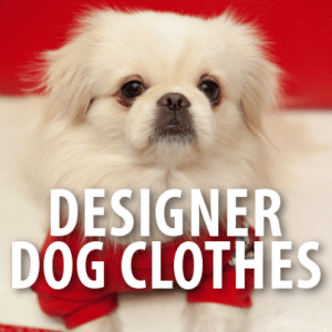 Today: American Eagle Matching Dog Clothes & Oreo April Fool's Prank