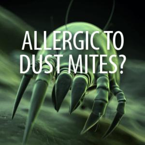 The Doctors: Dust Mite Allergic Reactions & Severe Allergy Symptoms