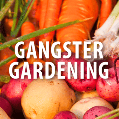 Today: Ron Finley Fights the Law, Child Obesity + Gangster Gardening