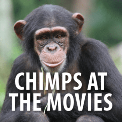 GMA: Chimpanzees at the Movies + Firefighter Finalists