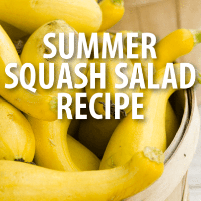 Kelly & Michael: Jean-Georges Farm-To-Table Summer Squash Salad