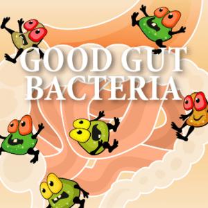 Dr. Oz: Food Elimination Gut Flush Diet & Replenishing Good Bacteria