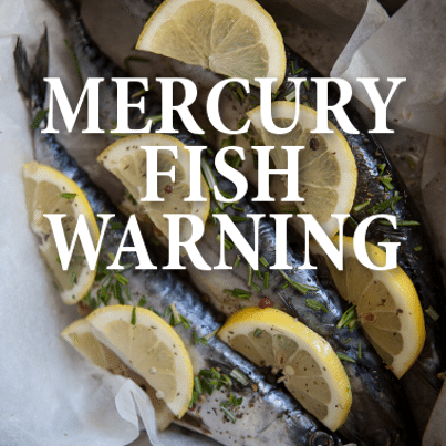 How does mercury get in our diet risks of eating too much for Where does mercury in fish come from