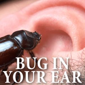 The Drs: Live Cricket Inside Ear + Leech Inside Nose Causing Nosebleeds
