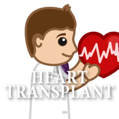 Sunday Morning: An Affair of the Heart, Carefree Lane & Tim Hauser