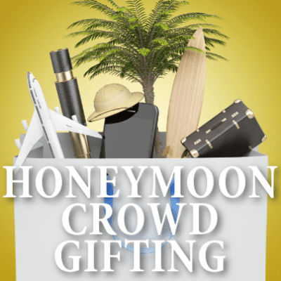 Shark Tank: Honeyfund Honeymoon Crowd Gifting & Plumfund Review