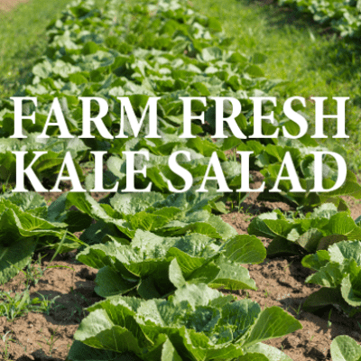 GMA: Mario Batali Spigarello Salad Recipe & America Farm To Table