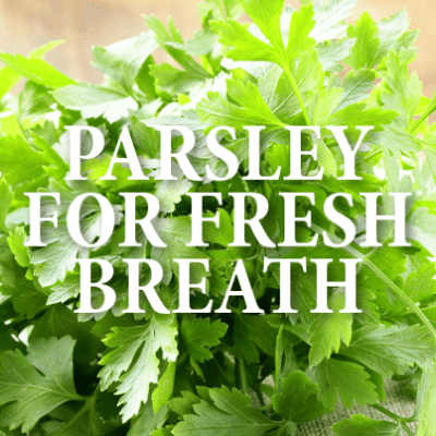 The Doctors: Scribd E-Book Subsciption + Fresh Parsley For Bad Breath