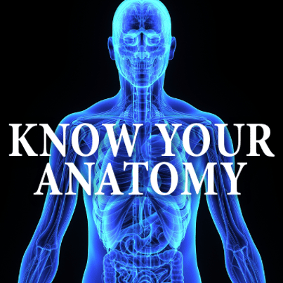 Dr Oz: Anatomy Lesson With Tommy Davidson + What Does Your Uvula Do?