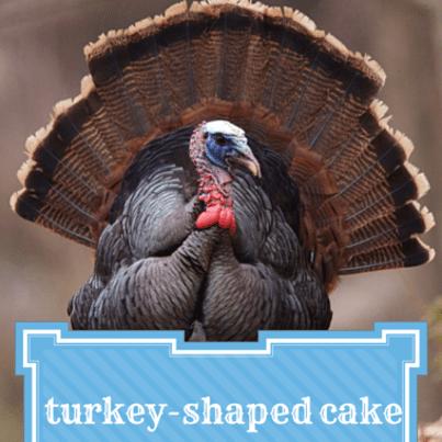 Turkey Shaped Cake Pan