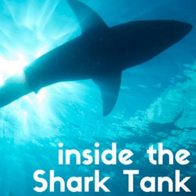 inside-shark-