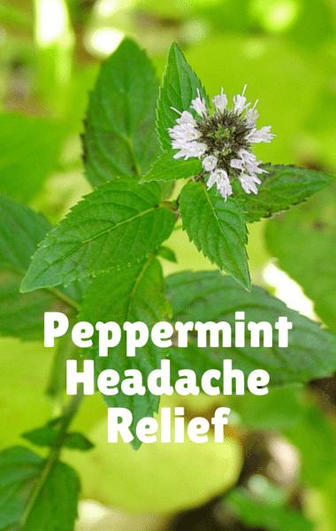 Dr Oz: Chronic Headache Relief + Magnesium & Peppermint