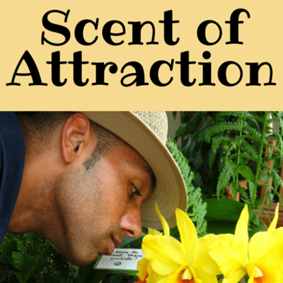 scent-attraction-