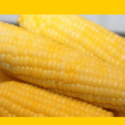 GMO-food-label-
