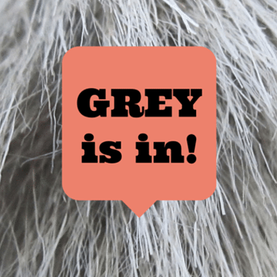 grey-is-in-