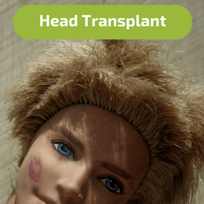 Head-Transplant-