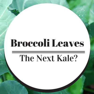 broccoli-leaves-next-kale-