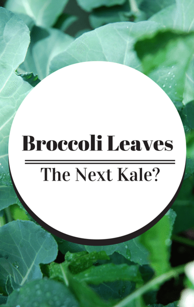 Dr Oz: Broccoli Leaves, Dulse, & Kohlrabi + Little Pink Pill