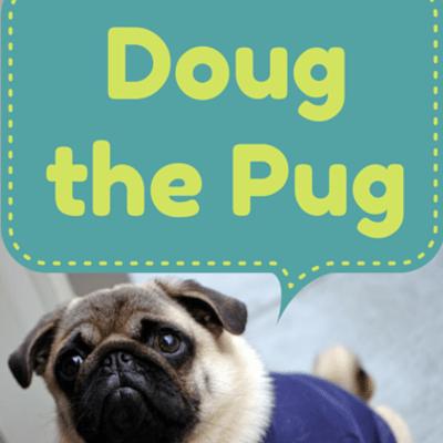 doug-the-pug-