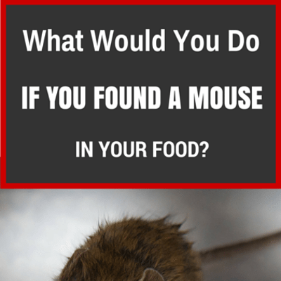 mouse-in-your-food-