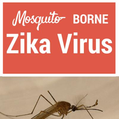 zika-virus-
