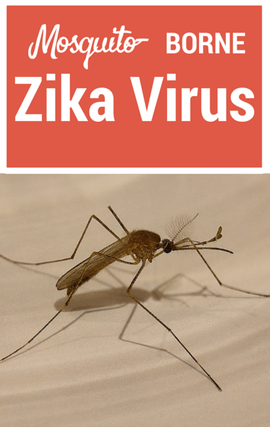 Drs: Mosquito-Borne Zika Virus + Flint, Michigan Water Update