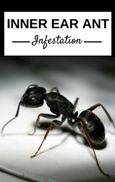 The Doctors: Inner Ear Ant Infestation + Tree Man Disease