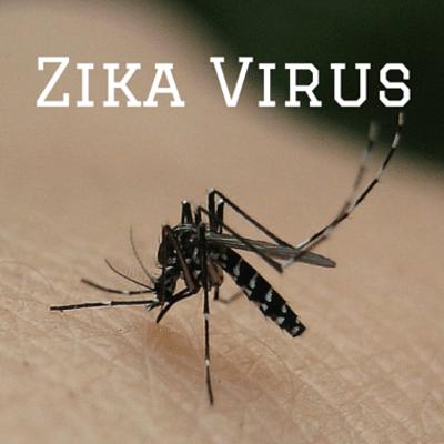zika-update-
