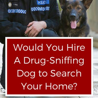 The Drs: Parents Hiring Drug-Sniffing Dogs + CEO Dental Makeover