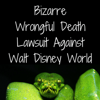 Drs: Disney World Wrongful Death Lawsuit + Pizza Personality Test