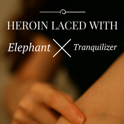 Drs: Heroin Elephant Tranquilizer + 'Straight Outta Compton' Suit