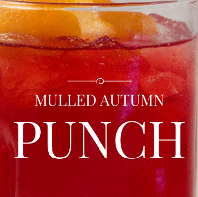 Rachael Ray: John's Mulled Autumn Punch Recipe