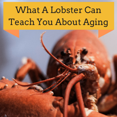 Dr Oz: Anti-Aging Lobsters + Age Defying Foods, Telomeres & Aging