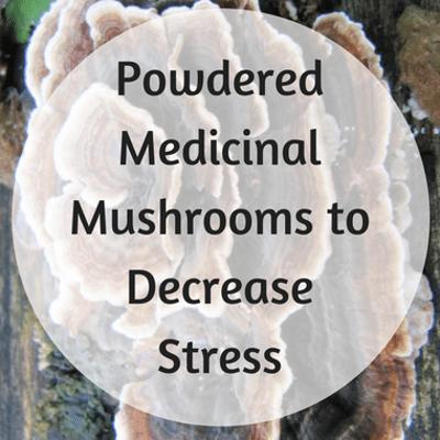 Dr Oz: Mushrooms For Stress? Powdered Medicinal Mushrooms Benefit